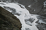Aerial of a lone Caribou crossing a river, Arctic National Wildlife Refuge, Alaska, USA