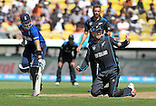 20.02.2015. Wellington, New Zealand.  Daniel Vettori attempts a run out during the ICC Cricket World Cup match between New Zealand and England at Wellington Regional Stadium, New Zealand.