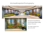 Five photographs by Michael Knapstein have been installed in the permanent collection of UW Hospital and are featured in the main lobby. Two of the images are 10 feet high and 16 feet long and are printed on specially treated sheets of aluminum.