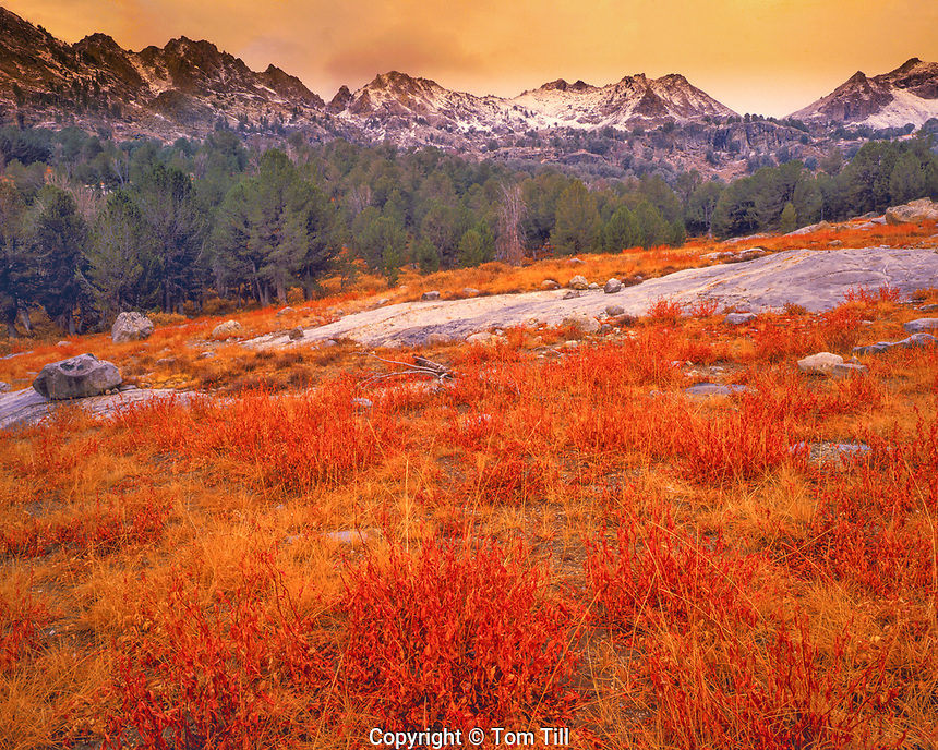 Autumn in Ruby Mountains, Lamoille Canyon, Nevada  HUmbolt National Forest   Great Basin near Elko