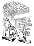 (An attendant plays on the vertebrae of a dinosaur skeleton on display in a museum gallery like a xylophone)