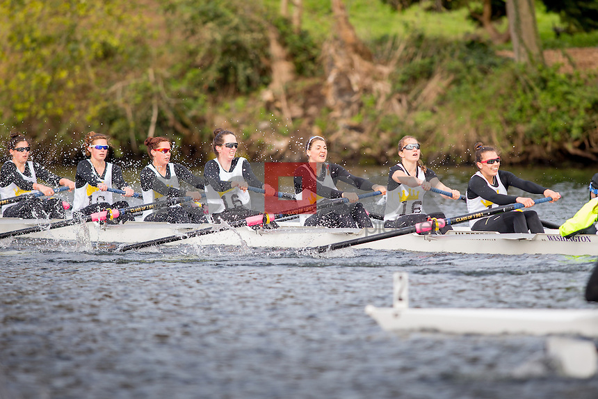 The 114th Annual University of Washington Class Day Regatta on March 28, 2015. (Photography by Scott Eklund/Red Box Pictures)