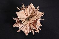 Origami designed and folded by Jorge Pardo, Spain on display at the OrigamiUSA 2013 Convention exhibition