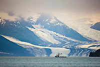 Commercial Seine fishing vessel Tenacious in front of Harvard glacier, College Fjord, Prince William Sound, southcentral, Alaska.