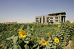 The new headquarters of the ICCB (Iraqi Construction and Consulting Bureau) under construction, outside Irbil, Iraq. Instability in Baghdad and the rest of Iraq has made Kurdistan a more attractive destination for investment, including several hotels, luxury residential developments, and industrial projects...Stability and security prevail in postwar Iraqi Kurdistan as Iraqi tourists, many of them from Baghdad, flock to the northern cities and their amusement parks and national parks to escape violence and sectarian strife in the central and southern regions of the country.