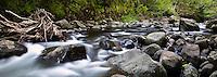 A stream runs through lush 'Iao Valley on the island of Maui.