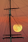 At sunset under a pink sky the full moon rose through the mast of the Balclutha sail ship anchor at  Aquatic Park, Fisherman Wharf, San Francisco, California.