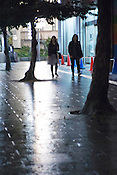 People walking on the streets on a rainy evening in Sakae, Nagoya Japan.