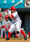 8 March 2006: Josh Labandeira, infielder for the Washington Nationals, at bat during a Spring Training game against the St. Louis Cardinals. The Cardinals defeated the Nationals 7-4 in 10 innings at Space Coast Stadium, in Viera, Florida...Mandatory Photo Credit: Ed Wolfstein.