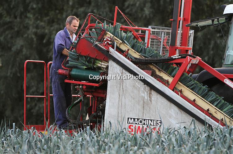 Prei oogst kondigt herfst aan vidiphoto - Saint maclou tapijt van gang ...