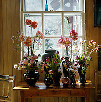 Amaryllis, tulips and other freshly cut blooms fill a collection of ceramic vases on this side table