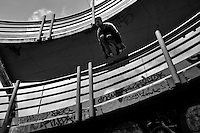 Steven Mantilla, a parkour runner from Tamashikaze team, jumps over the footbridge railing during a free running training exercise in Bogotá, Colombia, 13 March 2016. Parkour, originally developed in France during the late 1980s from military training, is a physical activity, focused on the art of movement and overcoming obstacles in a strictly urban environment. Practitioners of parkour employ running, climbing, jumping, rolling and other movements to pass through any urban area the most efficient way possible.