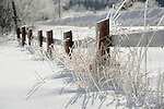 Ice Covered Reeds and Fence on a Snowy Pasture in a Wintry New Hampshire