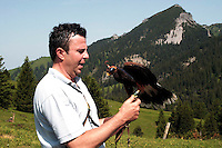 Liechtenstein  Malbun  June 2008.Small town high in the Alpine (southeastern)..Falconry Center.The falconer Norman  Vogeli with predatory  .www.galina.li...
