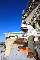 "Paris, Opera Garnier. Jean Paucton, 76 years old, on the roof of the opera opening up a hive and inspecting a frame. ""In urban apiculture, raising bees is easier because, firstly, the temperature is milder in Paris, by about 3°C, which allows them to go out more. Secondly, the flora is very diversified: linden, chestnut trees..."""