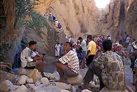 Tunisia, ragazzi tunisini e turisti in uno uadi dell'oasi di Nefta.<br /> Tunisia, Nefta oasis, Tunisian boys and tourists in a uadi.