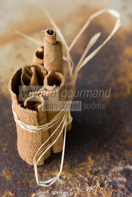 Afrique/Afrique de l'Est/Tanzanie/Zanzibar/Ile Unguja/Stone Town:Cannelle en batonnets , Zanzibar l'Ile aux épices
