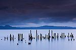 The weathered remains of wood pilings recall an earlier era when pilings were widely used to contain the vast rafts of timber harvested from the Northwest's old growth forests.  Today, less than ten percent of the old growth remains.  The old pilings remind me of platoons of soldiers from forgotten wars. Oregon, USA