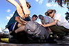 Melissa Moyer, a biologist with the U.S. Geological Survey team, takes some length measurements of a male manatee calf caught in the Faka Union Canal next to Port of the Islands while volunteer Edgar Bailey, right, a retired biologist from Alaska, helps stabilize the calf on Thursday. The calf and an adult female received a full physical  with weight and blood samples taken and a check for scars  before chips were placed under their skin for identification. Transmitters were also attached to their tails to send signals to a satellite to track the manatees. Erik Kellar