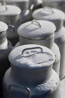 Europe/Suisse/Saanenland/Gstaad: Fromagerie: Molkerei Gstaad, les bidons de lait sous la neige