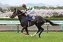 Lys Gracieux (Yutaka Take),<br /> APRIL 9, 2017 - Horse Racing :<br /> Lys Gracieux ridden by Yutaka Take before the Oka Sho (Japanese 1000 Guineas) at Hanshin Racecourse in Hyogo, Japan. (Photo by Eiichi Yamane/AFLO)