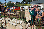 PRIDDY SHEEP and HORSE FAIR MENDIP HILLS SOMERSET ENGLAND
