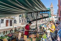 Italie, Vénétie, Venise:  Commerce flottant au ponte dei pugni , la barque de légumes de san Barnaba   // Italy, Veneto, Venice: