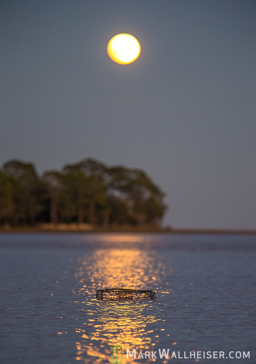 A crab trap sits in the low tide at Shell Point as the Snow moon rises over Live Oak Island in Wakulla County along the Forgotten Coast of the Florida panhandle.