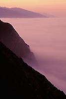 California, Big Sur, Dawn light and fog south of Ventana