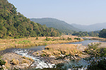 River and view, Corbett National Park, Uttarakhand, Oldest National Park in India, named after Jim Corbett hunter turned conservationist, Northern India.India....