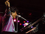 Little Richard performs at the PAETEC Jazz Festival in Baltimore, MD on Saturday, August 11, 2007.