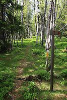 både Pilegrimsveg og turistline, på vegen fra Kubørgvegen til Roltdalen.