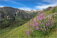 I crawled out of be at 3:45am and made the 45 minute drive from Durango to the Ice Lakes trailhead near Silverton... all in an attempt to photograph the Colorado landscape and the wildflowers that grow on the slopes. I had already photographed some coloumbine images at sunrise, made my way to Island Lake, and was heading back down when I had to stop here and photograph this scene. <br />