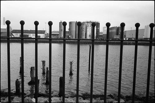 Railings, Gorleston Docks by Paul Cooklin