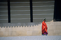 A costumed figure creates a colorful momentary vignette with shadows on a Kyoto street.