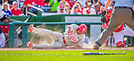 23 May 2015: Philadelphia Phillies outfielder Ben Revere slides home safely in the 4th inning for the 6th run against the Washington Nationals at Nationals Park in Washington, DC. The Phillies defeated the Nationals 8-1 in the second game of their 3-game weekend series. Mandatory Credit: Ed Wolfstein Photo *** RAW (NEF) Image File Available ***