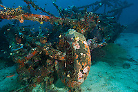 Wreck of Sikorsky S-38 once owned by Herbert Johnson of S C Johnson, Manokwari, West Papua, Indonesia.