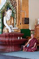 Myanmar, Burma.  Shwedagon Pagoda, Yangon, Rangoon.  Buddhist Monk Praying Beside a Buddha Statue demonstrating the mudras (hand gestures) of earth-touching (bhumisparsha) and wisdom (dhyana).