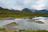 Landscape of the Chugach National Forest near Columbia glacier, Prince William Sound, southcentral, Alaska.