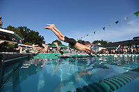 A swimmer dives into the water of a pool in Charlottesville, VA. Photo/Andrew Shurtleff
