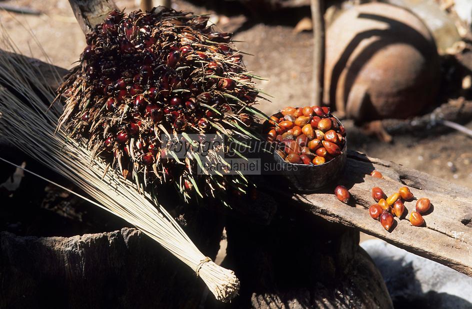 Afrique/Afrique de l'Ouest/Sénégal/Basse-Casamance : Noix palmistes