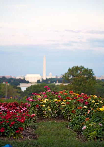 Washington DC Skyline National Mall Lincoln Memorial Washington Monument US Capitol