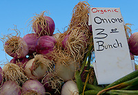 A pile of organic onions with roots and greens at SoCo's Farmers' Market.