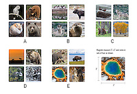 $12.00<br />