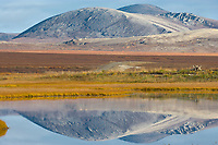Kigluiak mountains reflect in wetlands pond near Solomon along the Council highway on the Seward Peninsula, western arctic, Alaska.