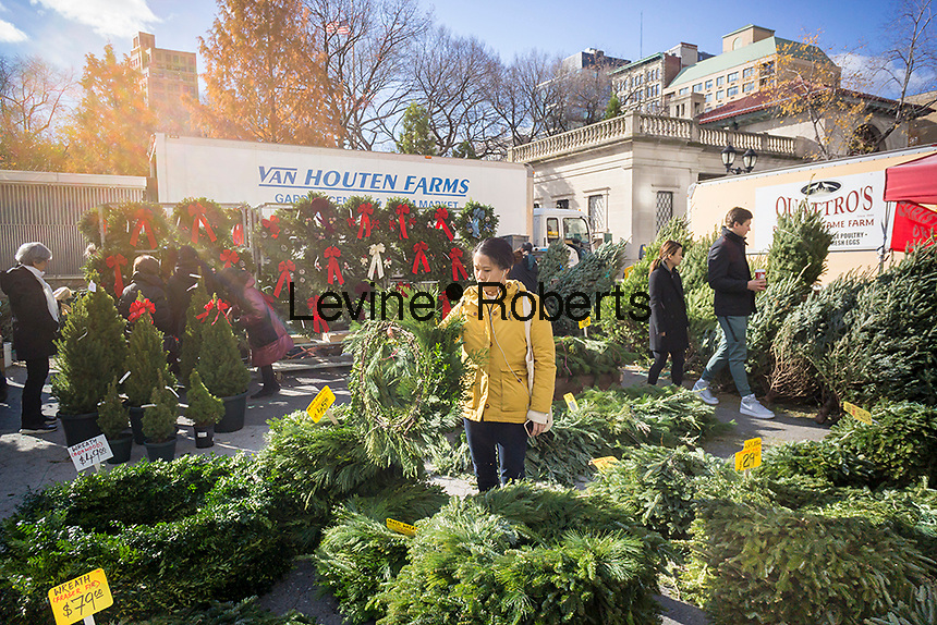 Christmas trees and decorations for sale in the Union Square Greenmarket in New York on Saturday, December 3, 2016.  (© Richard B. Levine)