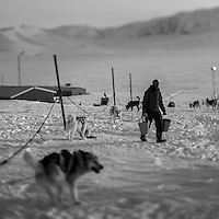 A member of the Sirius Patrol feeds the dogs which are used for the dogsleds in Daneborg. Established on the east coast of Greenland in 1950, Daneborg is the base for the Sirius Patrol, a Danish navy unit which patrols and enforces Danish sovereignty in the Arctic regions of Northern and Eastern Greenland. The Sirius Patrol is a Danish navy unit which patrols and enforces Danish sovereignty in the Arctic regions of Northern and Eastern Greenland.