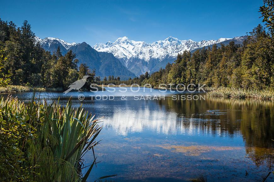Reflections of the Southern Alps through native bush at Lake Matheson, Westland Tai Poutini National Park NZ.