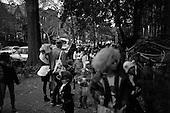 Brooklyn, New York<br /> October 31, 2012<br /> <br /> Halloween night in Park Slope Brooklyn.