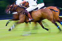 Polo ponies and riders at Guards Polo Club in Windsor, United Kingdom